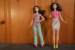 Barbie Careers Asian Nurse Doll, Black Hair and one other Ca